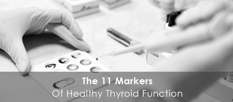 The 11 Markers of Healthy Thyroid Function