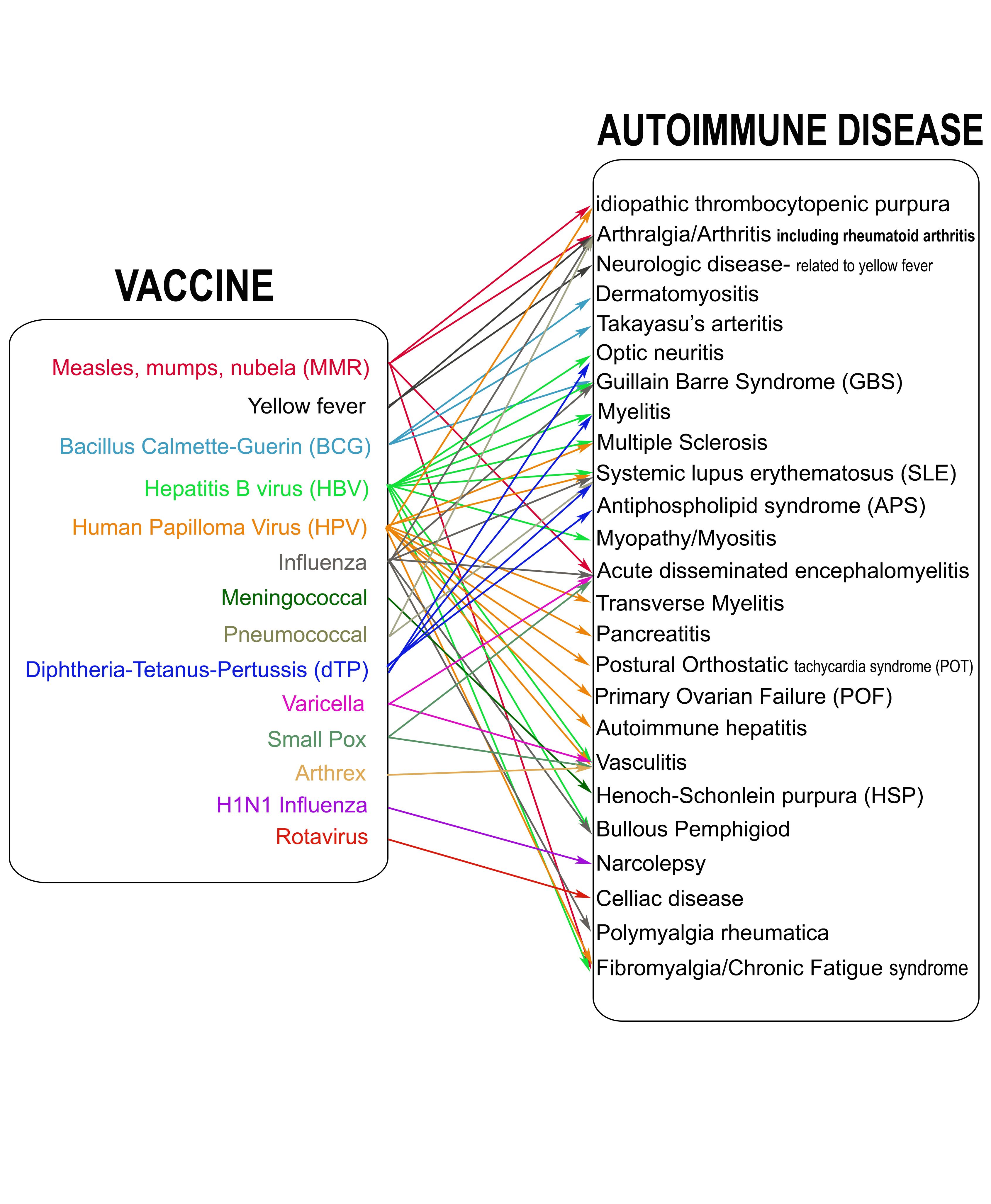 Vaccines and autoimmune