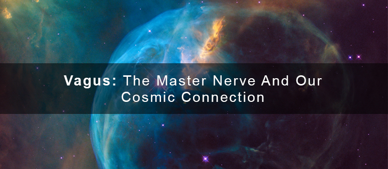 Vagus: The Master Nerve and Our Cosmic Connection